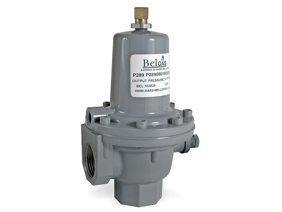 Belgas p289 Back Pressure Regulator
